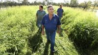Penalty rates weigh on farms